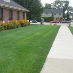 Fertilization Lawns Estimate