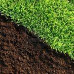Fertilizer Lawn Estimate