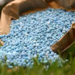 Fertilizer Lawn Estimates