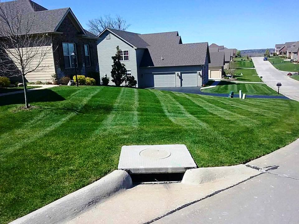 Lawn Mowing Care