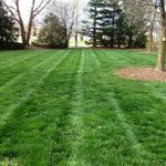 Lawn Mowing Service Estimate
