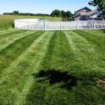 Lawn Mowing Estimate