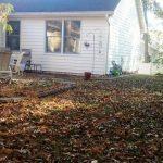 Leaf Removal Bid