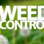 weed_control